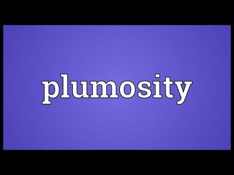 Header of plumosity