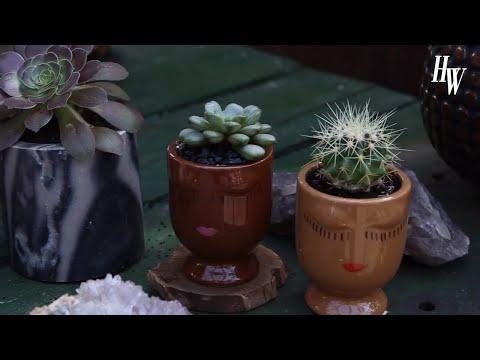 HealthyWay Visits Flowers & Weeds - 동영상