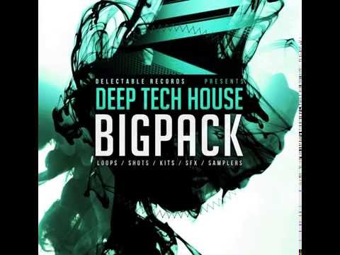 Delectable Records - Sample Pack - Deep Tech House Big Pack