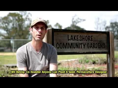 Permaculture Paradise: Lakeshore community garden: Meet the designers