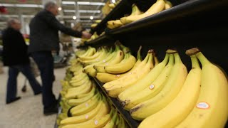 Why the Global Banana Industry May Be in Danger