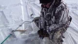 Рыбалка на Гусином озере.