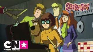 Nowe odcinki | Scooby-Doo i Brygada Detektywów | Cartoon Network