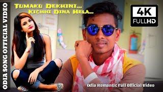 Tamaku Dekhini Kichhi Dina Hela | Full Official Music | 2019