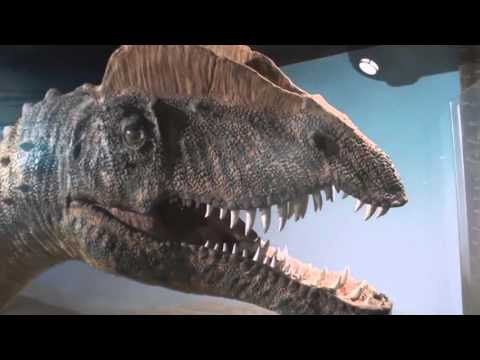 SVP 2015 Part 12: Arizona Museum of Natural History