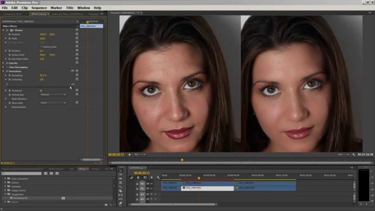 Download Imagenomic Portraiture Video Plugin for Adobe Premiere