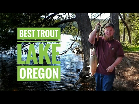 Best Southern Oregon Trout Fishing Lake Selmac!--- The Westerner Show