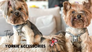 Small Dog Accessories You Need For Your Yorkshire Terrier Puppy |Top 10