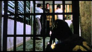Salvador Official Trailer #1 - James Woods Movie (1986) HD