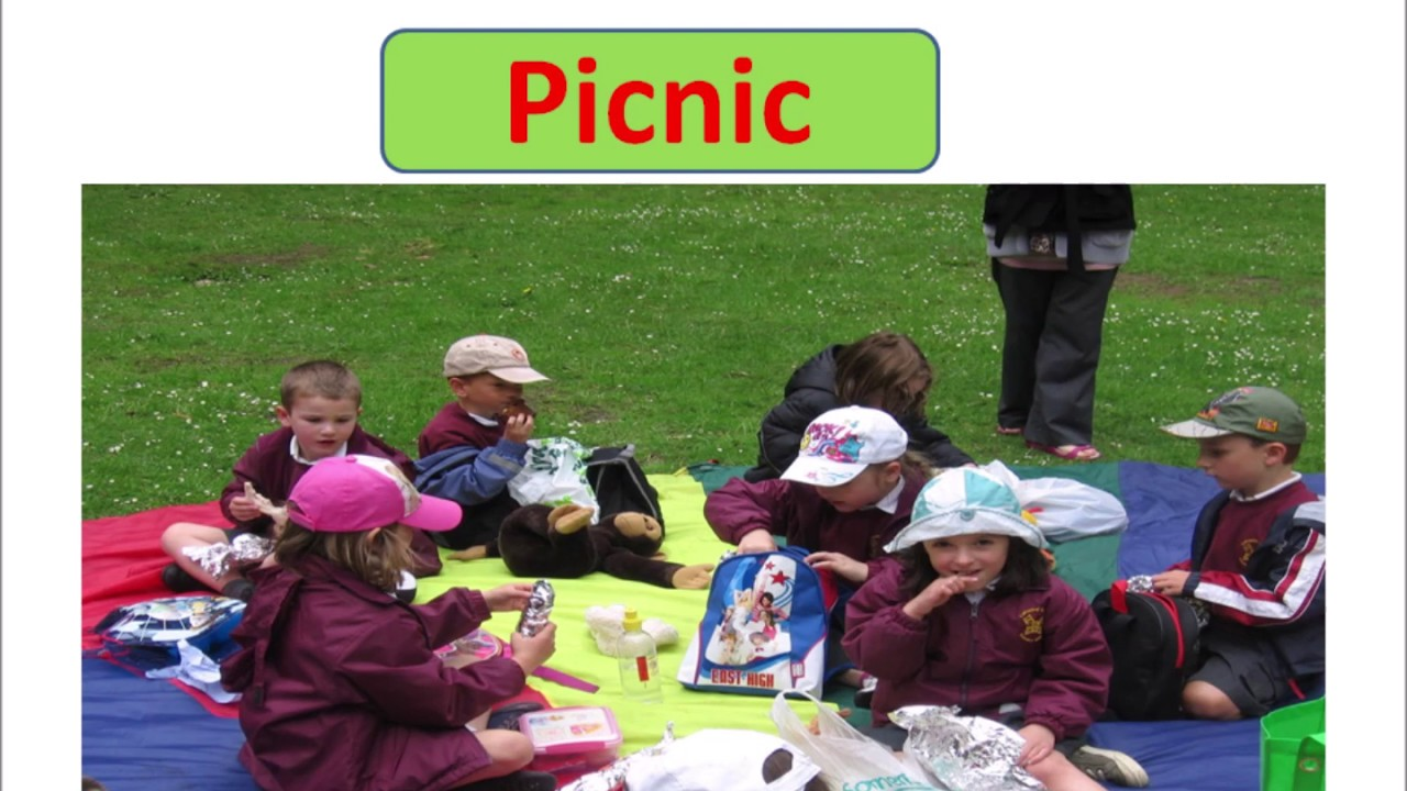 essay on my school picnic for class 1