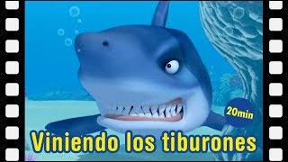 LIVE🔴 - Ataque de tiburón | Animación infantil | Pororo en Español | Pororo el pequeño pingüino