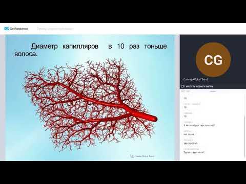 Часть 12  ПЕЧЕНЬ - биохимическая лаборатория  Лариса Богонатова