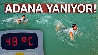 Adana'da Aşırı Sıcak, Termometreler 48 Dereceyi Gösterdi, Köpekler Göle Girdi