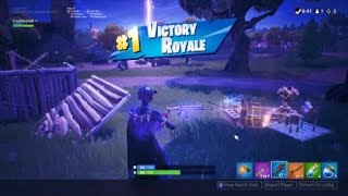Fortnite Win 2