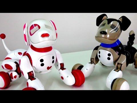 видео: Развивающие игрушки: Интерактивные собачки и Зумер (Zoomer)