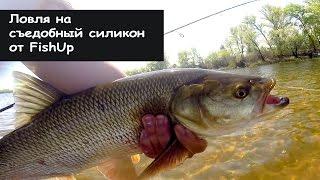 Ловля на Съедобный силикон. FishUp Fishing. Часть 1.