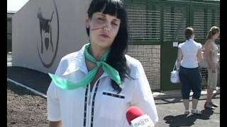 где взять кота или собаку центр животных Харьков.avi