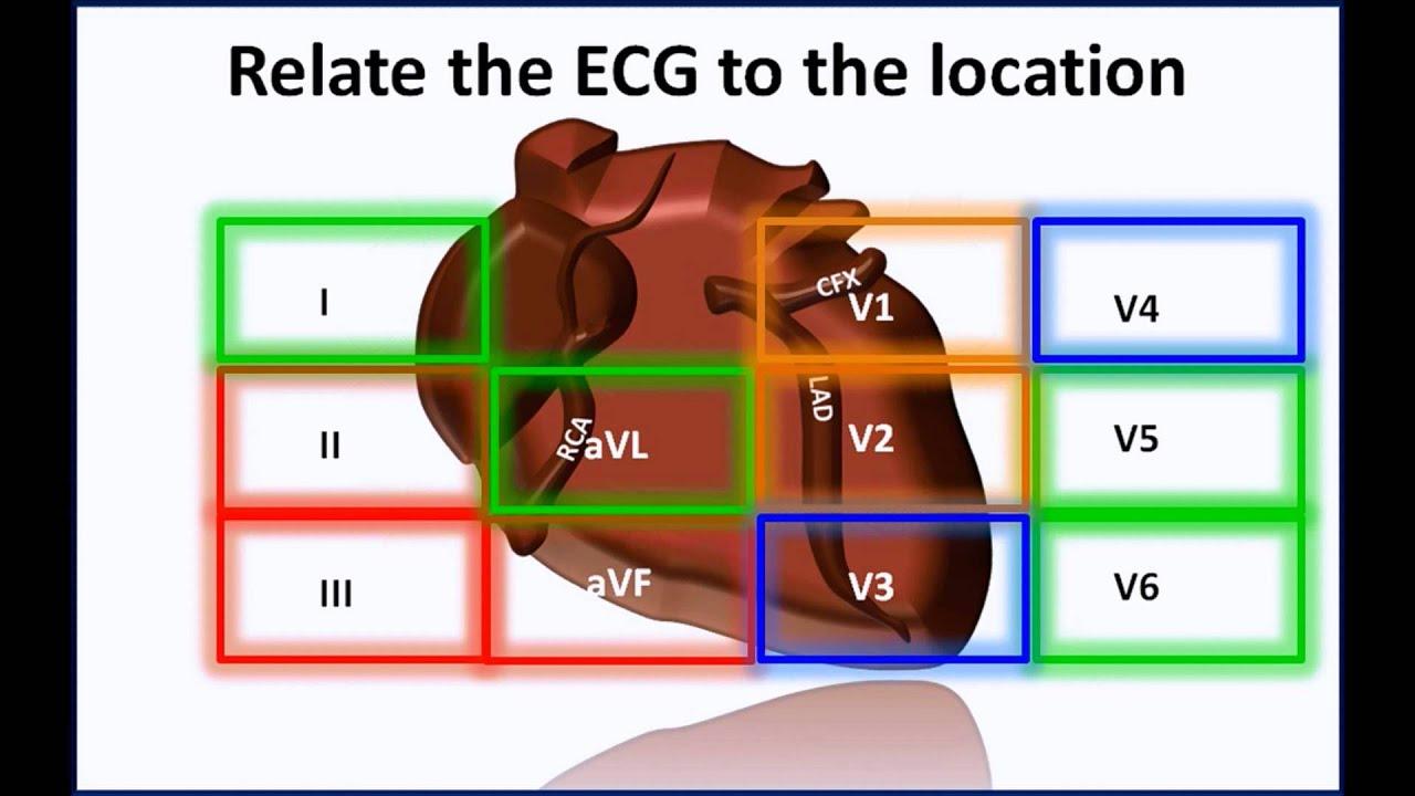 12 lead ecg made easy