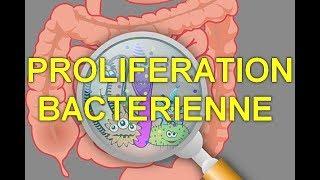 Quand les intestins ont capitulé - fermentation - prolifération - dysbioses - comment s'en sortir?