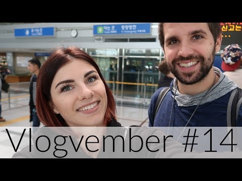 Ticket to PYONGYANG - Vlogvember #14