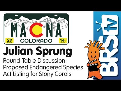 The Stony Coral Endangered Species Act Proposal by Julian Sprung | MACNA 2014
