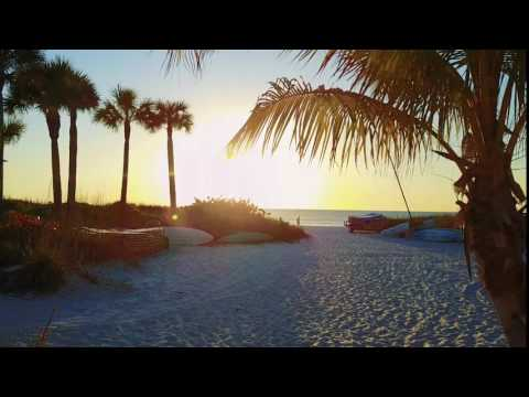 Tropical Beach Resorts - Siesta Key, Sarasota FL Hotel