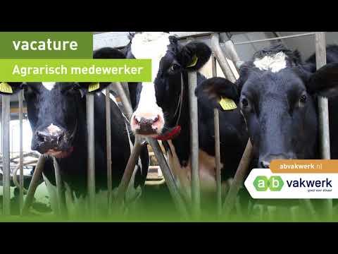 Videoheader Agri