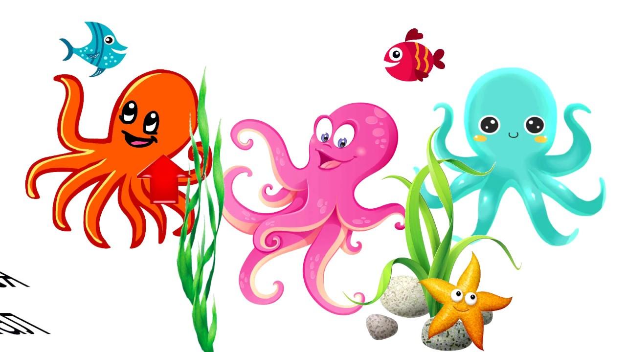 картинка группы осьминожки растерянности
