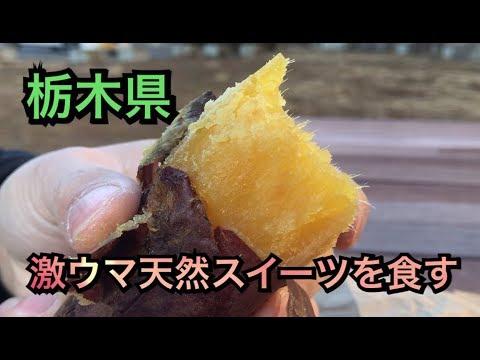 【栃木県グルメ】激ウマ天然スイーツを食す