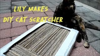 LILY MAKES : DIY CAT SCRATCHER