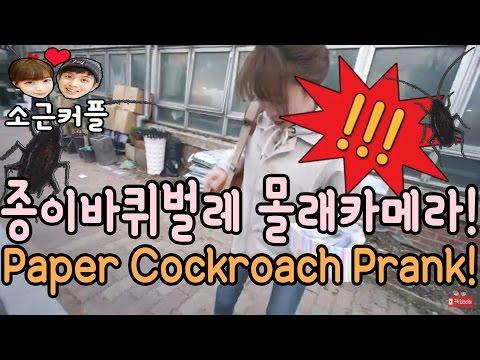 가짜 바퀴벌레로 여친 놀래키기 Fake Cockroach Prank! [소근커플 S.K.Couple]