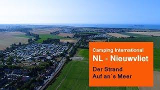 Camping International - Nieuwvliet (Bad)  - Der Strand - Entfernung zum Platz