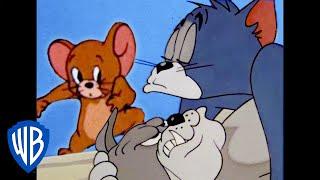 Том и Джерри | Что за ночь! | WB Kids