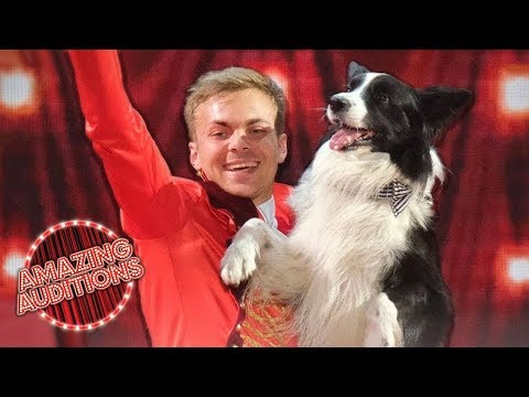 Adorable Dog Act Lukas & Falco Perform The Greatest Showman  America's Got Talent 2019