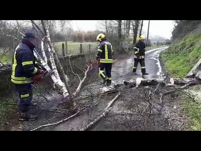 Los bomberos retiran un árbol de una pista de Nadela