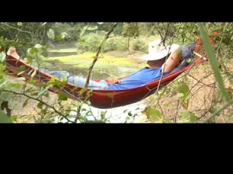 Explore Gorongosa