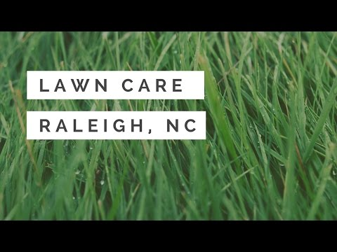 Lawn Care Raleigh, NC