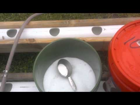 Planting Tomatoes in the Rain Gutter Grow System