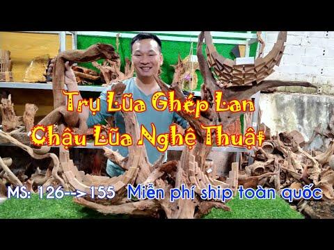 0949285562(Ninh), 0376448801(Năm) || Gỗ Lũa Xứ Lạng