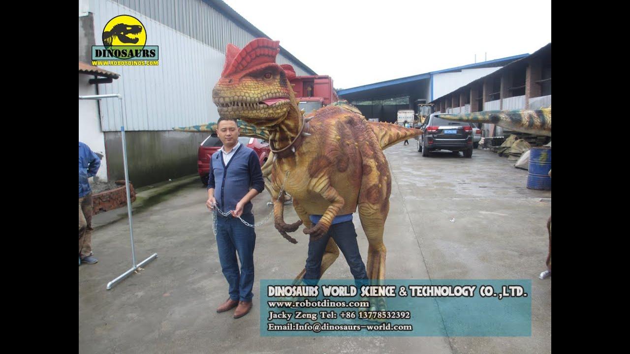 Hot Sale Animatronic Walking Dinosaur Costume/Walking Dinosaur Puppet/Walking Dinosaur Suit - YouTube  sc 1 st  YouTube & Hot Sale Animatronic Walking Dinosaur Costume/Walking Dinosaur ...