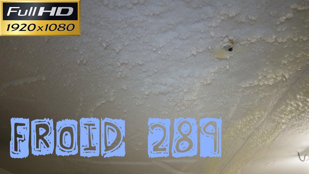 Froid289 Glace sur le plafond de la chambre froide négative joint