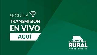 03/12/19 - Feria María Dolores - General Ramirez, Entre Ríos - ETCHEVEHERE RURAL S.R.L