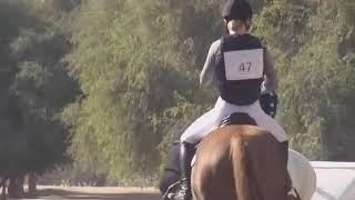 А мой смысл жизни это конный спорт
