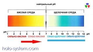 Микроорганизмы и рН внутренних сред
