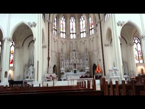 Cathedral Basilica of the Immaculate Conception 02