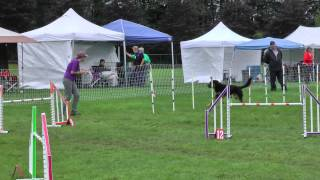 Dillon's Agility, Master Jumpers, 73rd Qq & 4th Place!