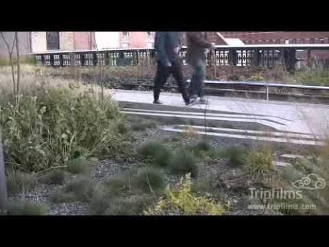 PREVIEW: Great Museums: Elevated Thinking: The High Line in New York City from YouTube · Duration:  6 minutes 38 seconds