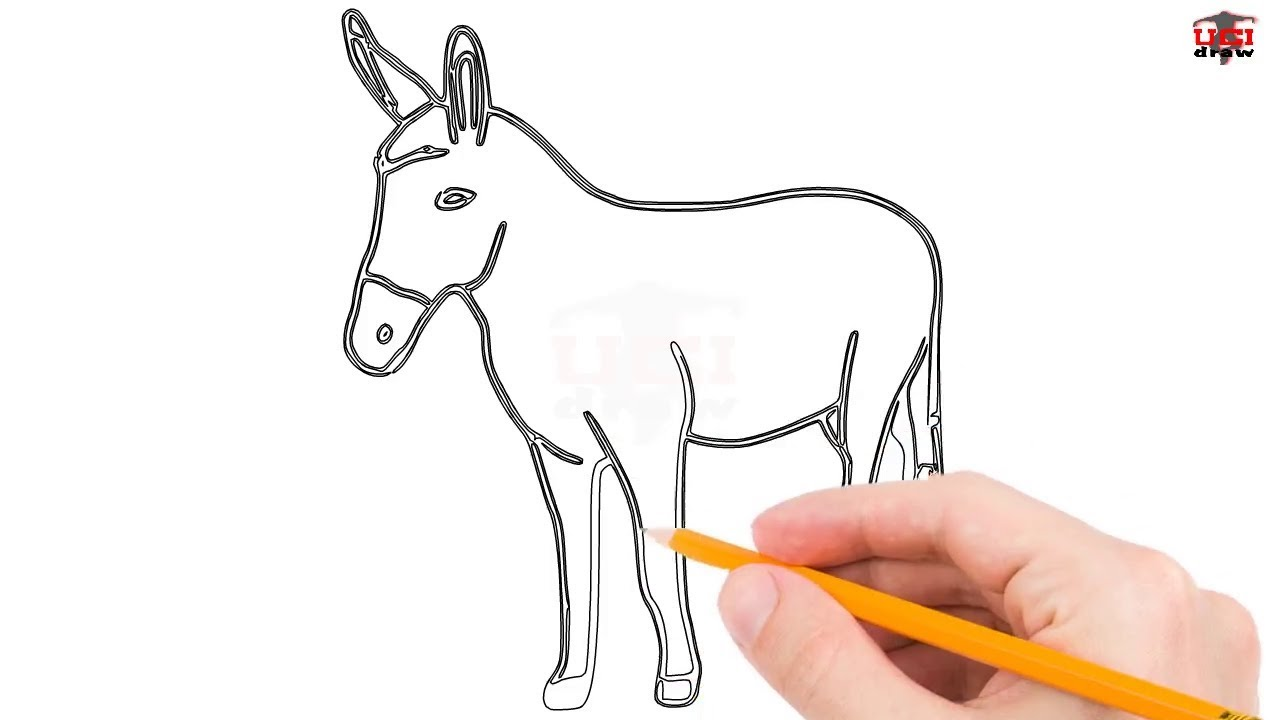 How To Draw A Donkey Step By Step Easy For Beginners Kids Simple
