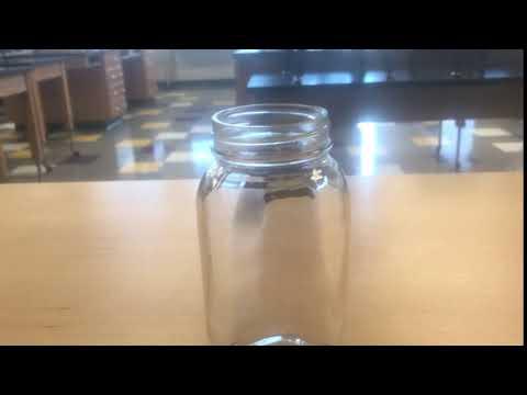 Inertia Lab Penny Flick