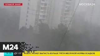 В Москве коммунальные службы переведены в режим повышенной готовности - Москва 24